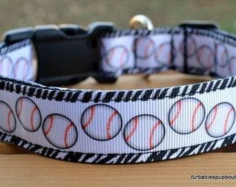 Zebra baseball dog collar & or leash