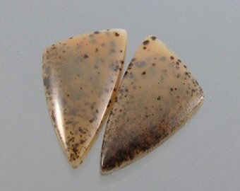 Montana Agate Designer Cabochon Matched Pair