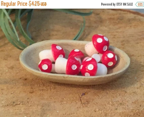 SALE Mini Mushrooms, Toadstools, Fairy Garden Accessory, Miniature Home and Garden Decor, Crafting, Packaged Set of Red and White Mushrooms