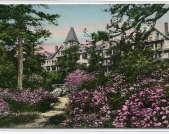 Wildmere Lake Front in Laurel Time Lake Minnewaska New York hand colored postcard