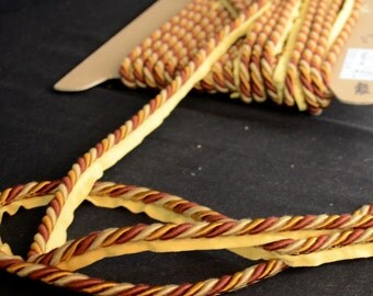 BC10004 83 06 Newport Gold Burgundy Lip cord Trim