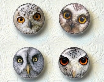 Owl Magnet Sets Choose from 4 Different Prints Buy 3 Sets Get 1 Set Free 553M