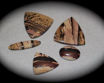 U- Pick Indian Paint Stone -rare scenic jasper, Death Valley jasper - trillion, oval, ring stone, pendant stone, natural rare cab, collector