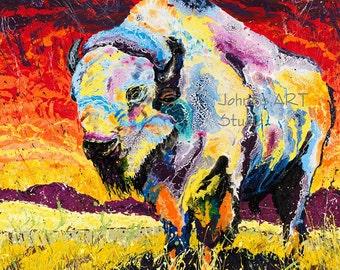 Buffalo art, White Buffalo art, great plains Buffalo, Bison wall art, wildlife art, metal prints,  Johno Prascak, Johnos Art Studio