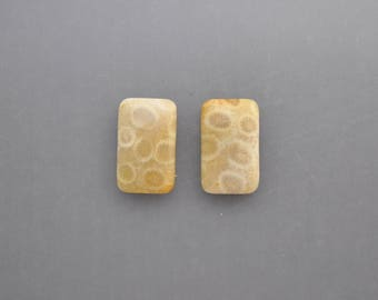 Agatized Coral Cabochon Pair