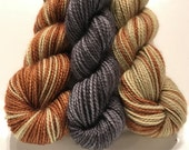 Handsome Frogs Polar Opposites with Contrast... Canon Hand Dyes Charles Self Striping Superwash Sock Yarn