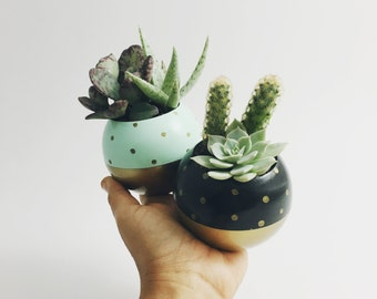 Gold Dot Color Block Pod Planter