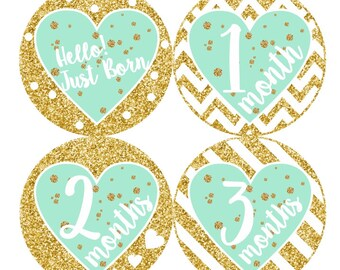 1st Year Baby Month Stickers, PLUS Just Born Sticker, Baby Girl Bodysuit Stickers, Monthly Sticker, Baby Milestones, Gold Glitter Mint 168G