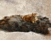 Cat Bed - Hand Felted Wool Fleece Sheep-friendly Rustic Pet Rug- Navajo Churro Silver Brown - Supporting American Small Farms