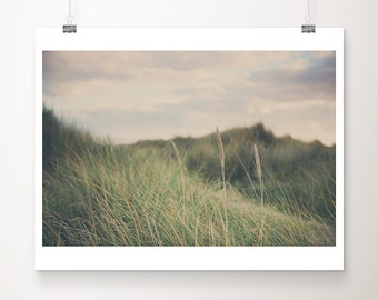 beach grass photograph beach photograph nature photography sunset photograph green home decor landscape photograph beach house decor