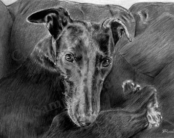 Black 4 B&W - Art Print of original Greyhound Whippet drawing by English Artist Stephen Russell of RussellArt