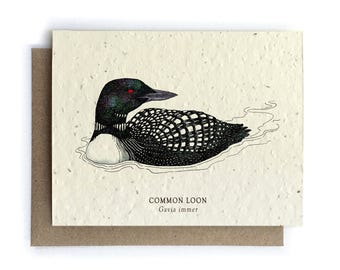 Loon Greeting Card - Plantable Seed Paper - Blank Inside