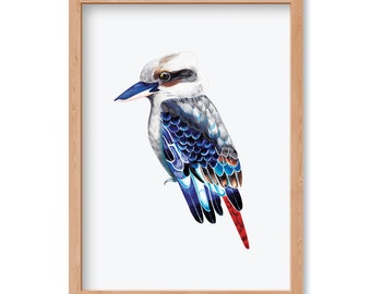 Kookaburra True Blue - Limited Edition Print