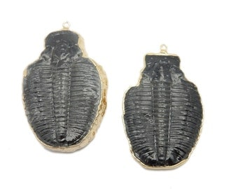 Large Trilobite Pendant with Electroplated 24k Gold Edge (S87B17-06)