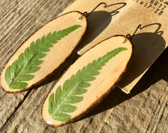 Real Fern Frond Earrings on Wood Slats Long Oval