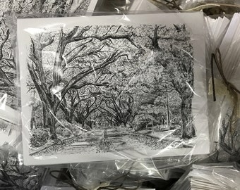 """Notecards """"Canopy over the Avenues """""""