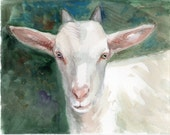 Goat WATERCOLOR original, Farm animals, white goat painting original