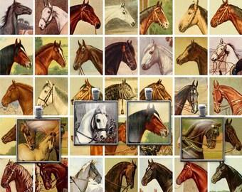 Printable Vintage Horses Digital Collage Sheet - 1 Inch squares - JPG - PDF - Instant Download - Downloadable - Commercial use / Cu use ok