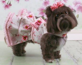 EASTER:  Cherry Blossoms Dog Party Dress