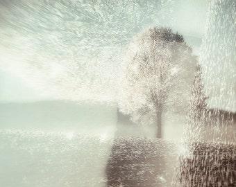 Tree Photography | Winter Landscape | Abstract Nature Print | Minimalist Art | Pastel | Surreal Decor | Large Wall Art | Square Wall Decor