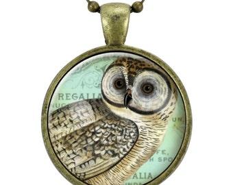 Cute Owl Necklace, Pagan Owl Jewelry, Animal Pendant (1130B25MMBC)