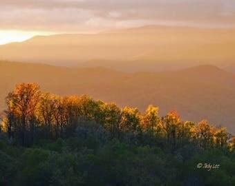 Landscape Photography, Sunset photography, North Carolina, Smoky Mountains, Blue Ridge sunset, Wall Art, Home Decor, Nature Photography,tree
