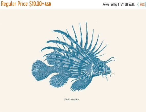 SALE 15% OFF Antique Lionfish Print Pterois 1874 Restored Image Natural History