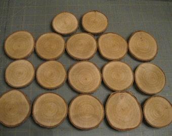 "17 Tree Slices-2 1/2"" Wood Slices #11-Wood Slice Wall Art Supply-Tree Slice Wall Art Supply-Wedding Supply-Rustic Wedding Supplies"