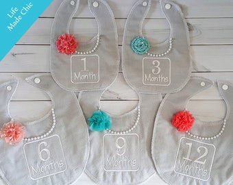 Baby month bibs, 1-3-6-9-12 Mos.Bibs,  Picture Bibs, Photo Prop, Don't miss capturing the months of your baby's life. Baby Girl Bibs