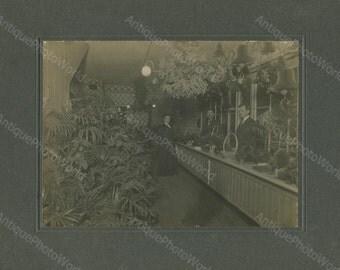 Flower floral plant shop antique photo