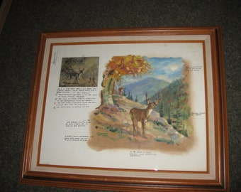 """FAMOUS ARTISTS PAINTING Course January 20, 1966 Students Painting Of A Deer Mountains With Instructors Critique Wood Frame 24 1/2"""" x 20 1/2"""""""