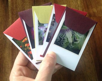 Flowers Insta-notes (set of five)