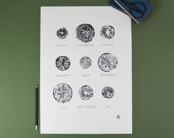 Fruits of the Spirit - monochrome screenprint