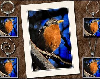 Robin Photo Note Card Set - Robin Pendant, Robin Keyring, Robin Ornament, Robin Wine Charm - Bird Note Card - Greeting Card Handmade (GP95)