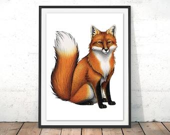 Red Fox Illustration by Lyndsey Green Red Fox Art Print Fox Drawing Fox Wall Art British Wildlife Giclee Art Print Red Fox Poster by Lyndsey