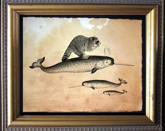 Raccoon Riding Narwhal - Vintage Collage Art Print on Tea Stained Paper - Vintage Art Print - Vintage Paper