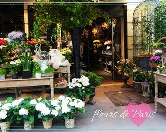 Fleurs de Paris Desktop Wallpaper