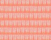 Trail Mix - Feathers(Coral) - Rae Ritchie - Dear Stella Designs