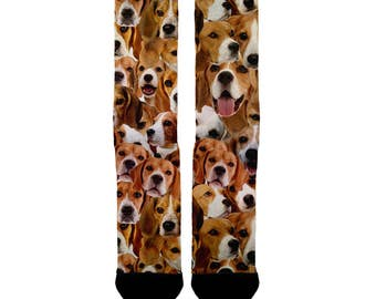Beagle socks; Dog socks; Beagles