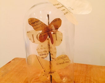 Butterfly vintage dome taxidermy style