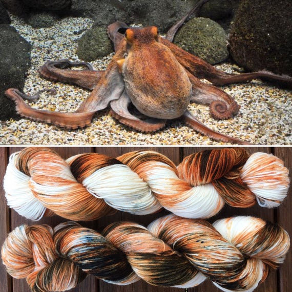 Common Octopus DK, cephalopod inspired speckle dyed 75/25 merino nylon indie sock yarn