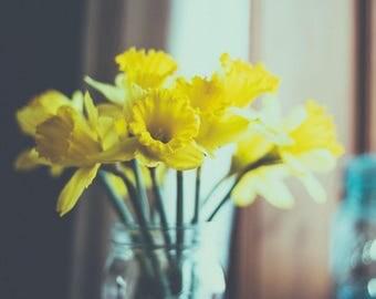 Daffodils, Yellow, Still Life, Flower Photography, Fine Art, Original Photography, Wall Art, 8x10 Print