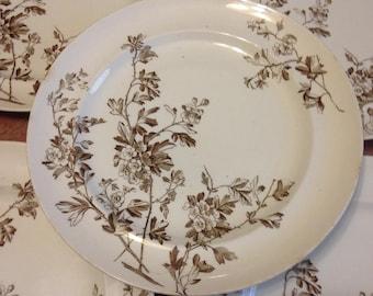 c.1880 Hawthorn Plates
