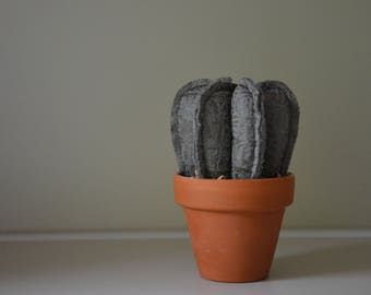 Cactus from fabric in terracotta flower pot