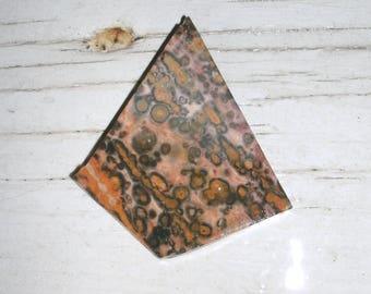 Leopardskin Jasper, Jaguar Stone, flat slab, preform cabuchon cut, unique shape, beautiful colors and details, healing stone, detoxifying