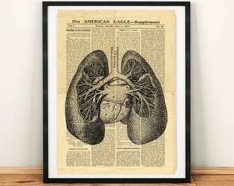 Human Lungs Antique Anatomy Vintage Printable Collage Old Newspaper A3 Lung Wall Art Print 11x16 Home Decor - DIGITAL DOWNLOAD jpg HQ300dpi