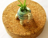 Ceramic Turtle Airplant holder, tiny, mini, cute, adorable, air plant, succulent, pottery