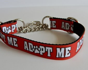Red ADOPT ME Martingale Collar with Chain Control Loop - Ready to Ship!