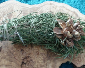 Fresh & Fragrant Wildcrafted Rocky Mountain Pinon Pine Juniper Decorative Smudge Bundle w/ Pinecone Hemp Cord Silver Feather Natural Incense