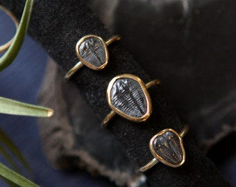 Trilobite Ring - Genuine Fossil and Brass